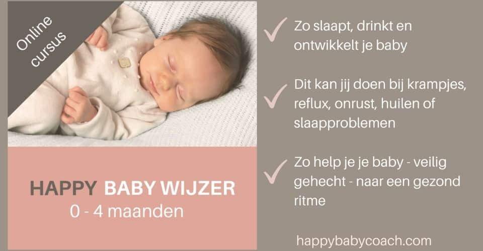 Het Vierde Trimester – Happy Baby Wijzer